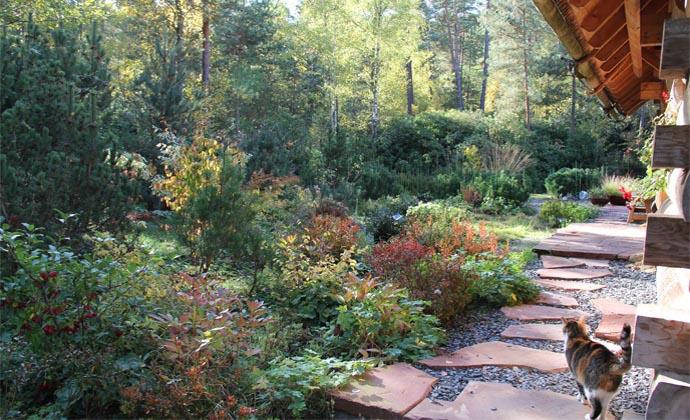Entretien jardin stylisme ing nieur horticole for Entretien jardin 35